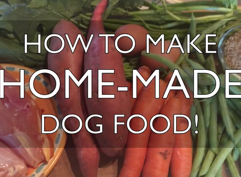 How to Make Home-Made Dog Food