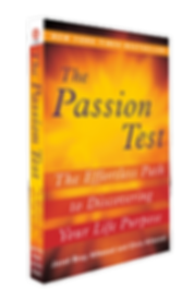 The Pasion Test book