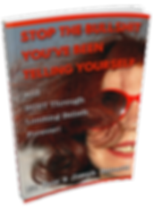 Stop The Bullshit ebook cover