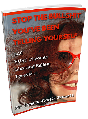 Stop The Bullshit ebook cover