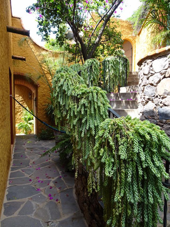 Entrance to the Casita and Suite...