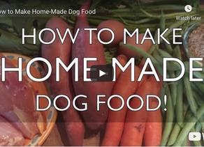 How to Make Home-Made Dog Food (video)