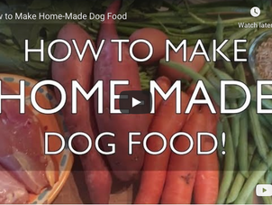 How to Make Home-Made Dog Food (video)