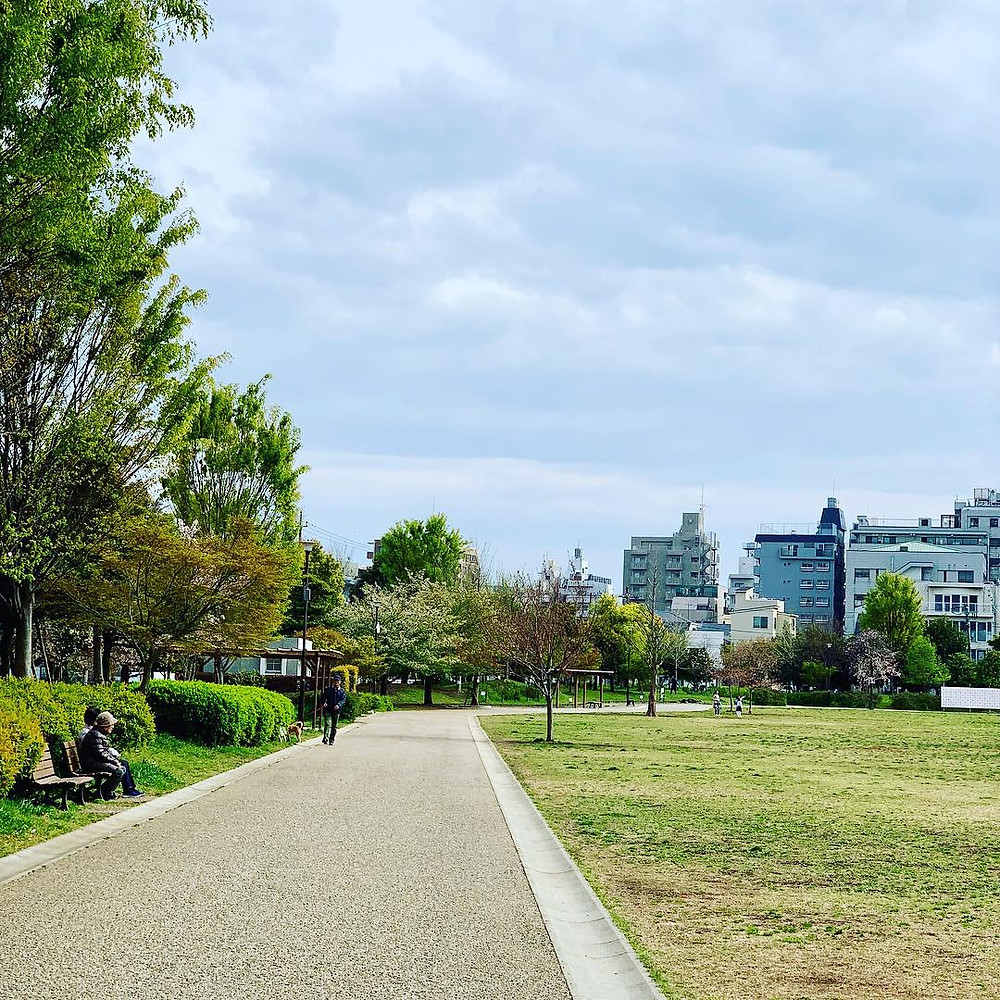 桃井三丁目はらっぱ公園