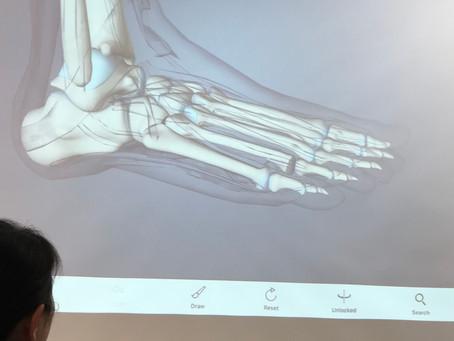 足が変われば身体が変わる!Yamuna Foot Work Shop
