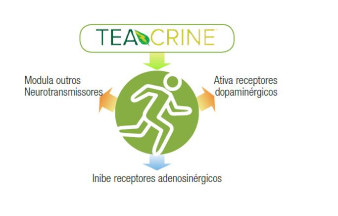 Resultado de imagem para teacrine