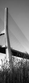 Ponte Vasco da Gama.png