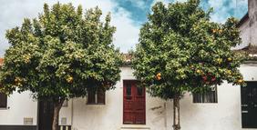 Ruas de Beja, acervo pessoal, Portugal