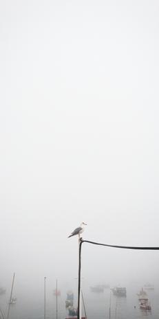 Paisagem da Baía de Cascais