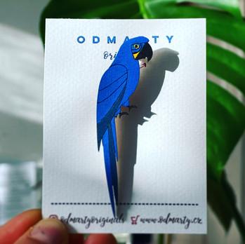 ara macaw hyacintovy