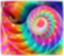 Fensterbild7_edited_edited.jpg