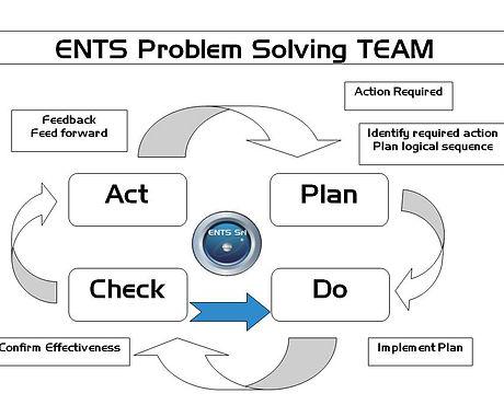 Ents_Problem_solving.jpg