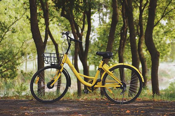 bike-trail-newfound-lake-inn.jpg