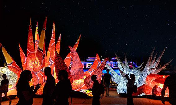 1.-Red-Air-(night)-Photo-by-GAS.-Web.jpg