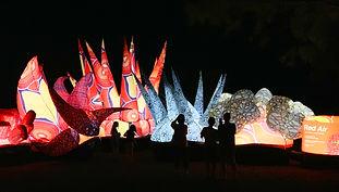 9. Glow Festival.jpg