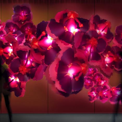 4.Peony-Lanterns-Installation.jpg