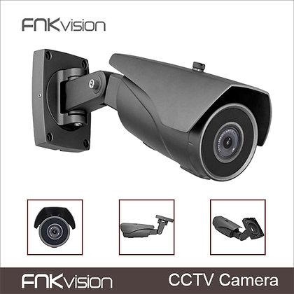 "1/3"" Sony CCD starlight camera"