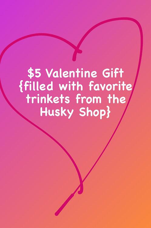 Special $5 Valentine Gift Bag