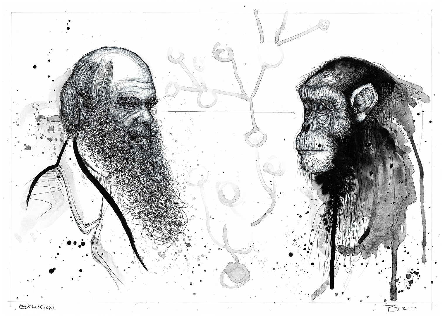 Darwin's Evolution