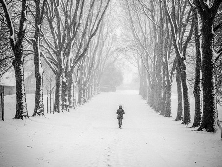 Andy Into the Wild: Tips & Tricks for Street Photography in the Snow
