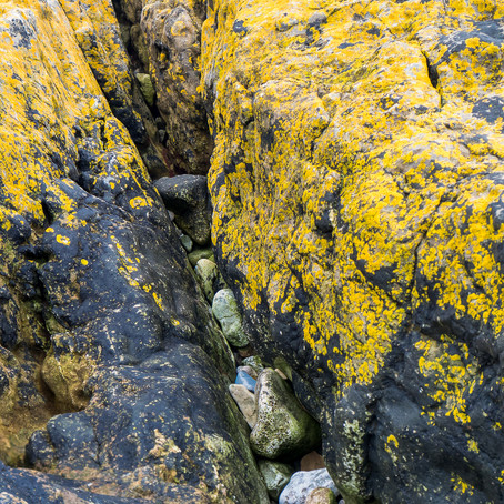 """Overcast days…a photo trip to """"The Mumbles"""""""