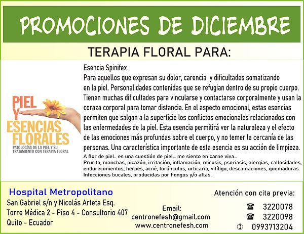 flores_p_piel_promo.JPG