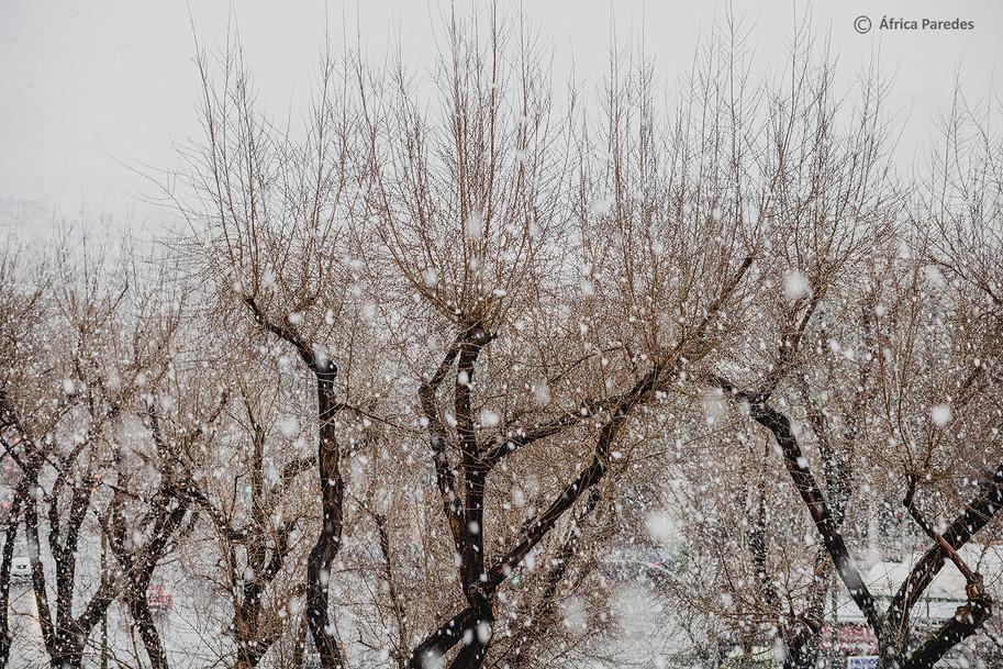 El día que nevó en Madrid