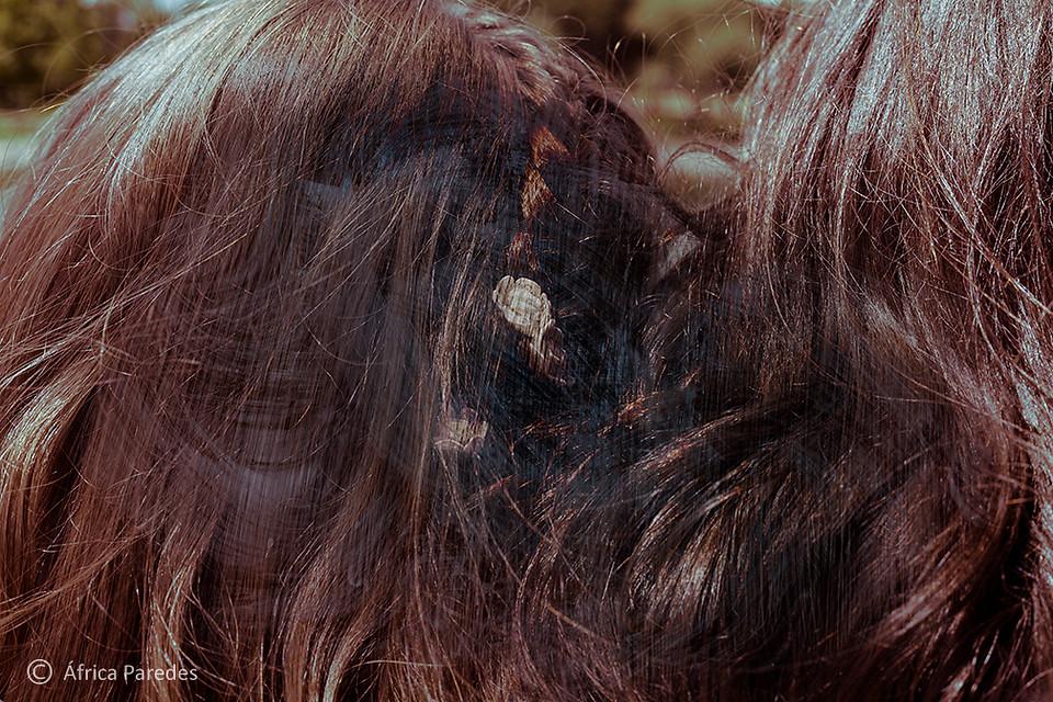Esto no es una foto de pelo
