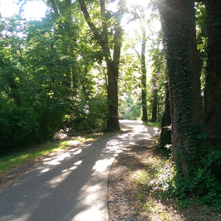 Northwest River Trail in Marietta