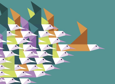 How to Create Better Nonprofit Executive Teams