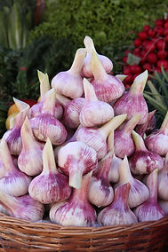 Fresh vegetables - garlic on counter of