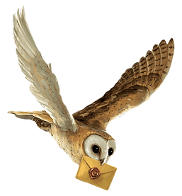png-transparent-brown-owl-with-brown-env