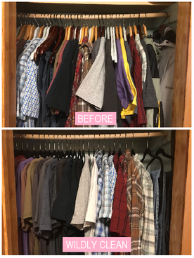 Wildly Clean Closet Makeover (2/3)