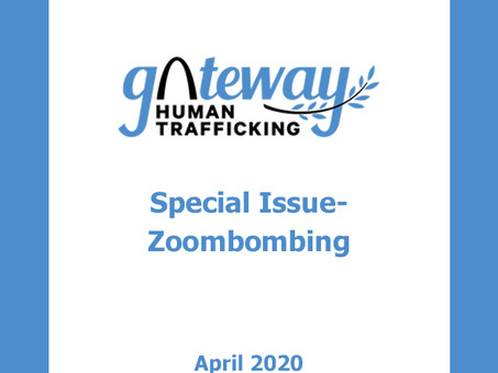 Special Issue- Zoombombing