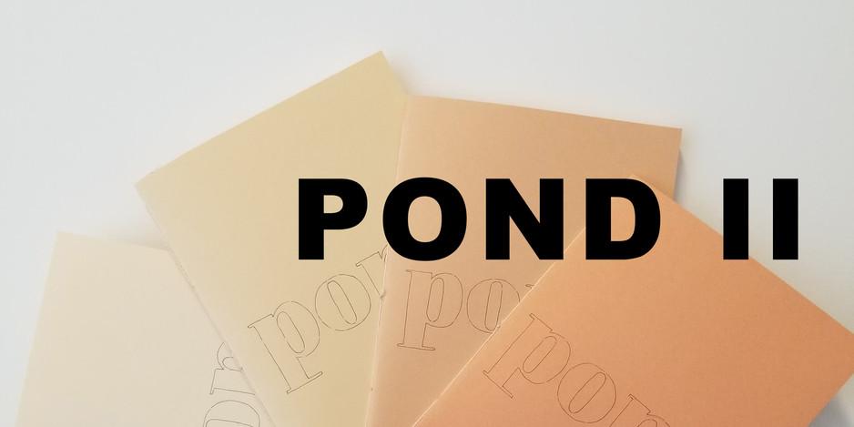 pond ii.jpg