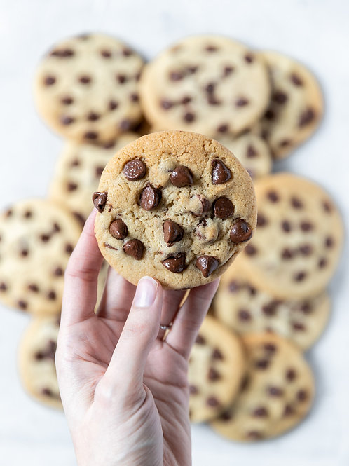 Chocolate Chip Delight