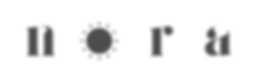 2019_Nora_Vector_03-Horizontal-Logo.png