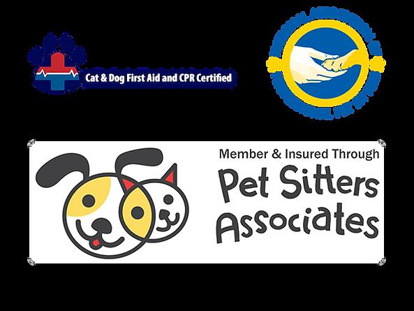 Certificates and Memberships.png
