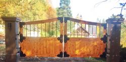 #59 | Barrière en bois courbée