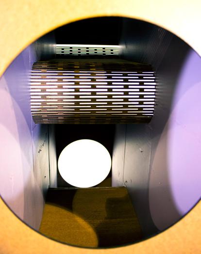 Shelly Denning - Cat Tunnel - Detail12.j