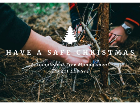 CELEBRATING A SAFE CHRISTMAS