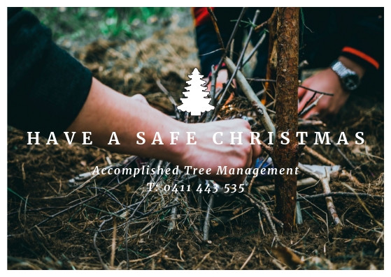 Christmas Safety tips from a tree lopper at Accomplished Tree Management