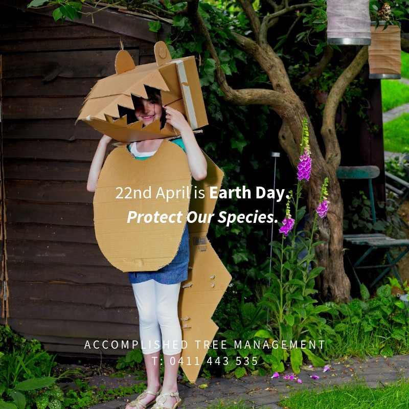 Accomplished Tree Management supports Earth Day to Protect Our Species