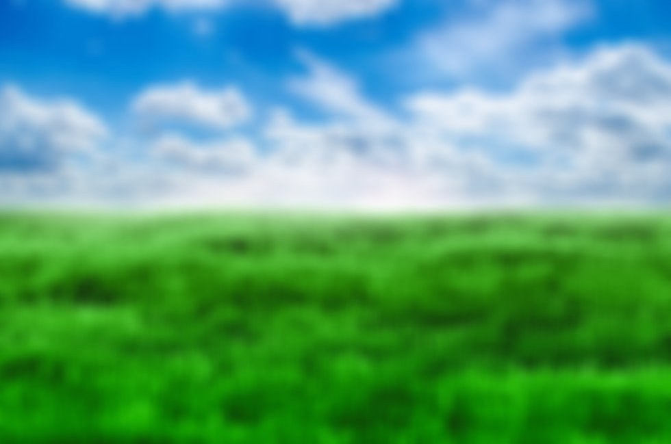 green-grass-and-blue-sky-1398454014G2m_e