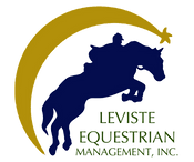 LEMI Logo 2016 no bg.png