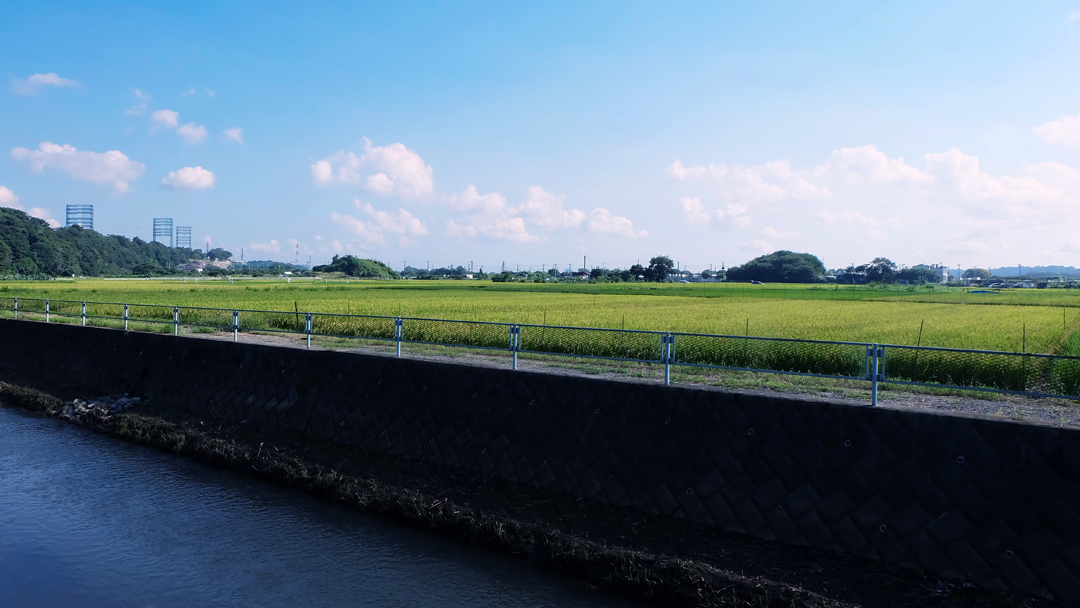 ▲南側座敷から見える田園風景05(9月)