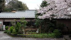 ▲西側庭より桜の木と飄禄玉外観