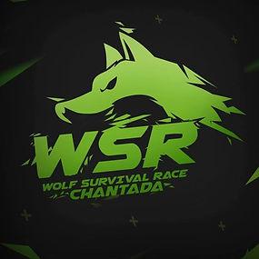 Wolf Survival Race