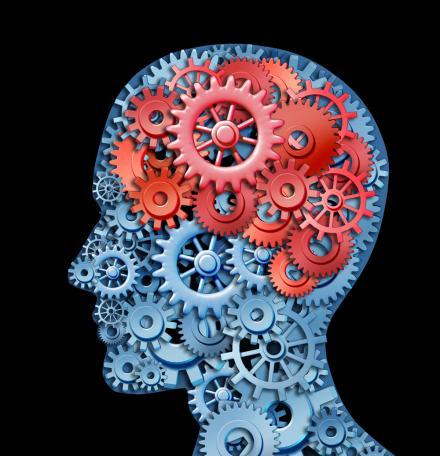 Brain Care Formula