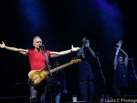 The Wonderful Sting performed at a sold out concert in Lucca last night: